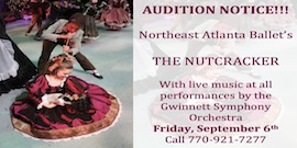 14 nut audition banner 1 small